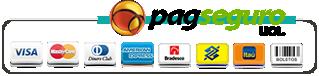 PagSeguro: Venda pela internet e receba pagamentos online facilmente